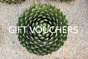 Spa-voucher-perth