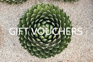 Spa-voucher-perth