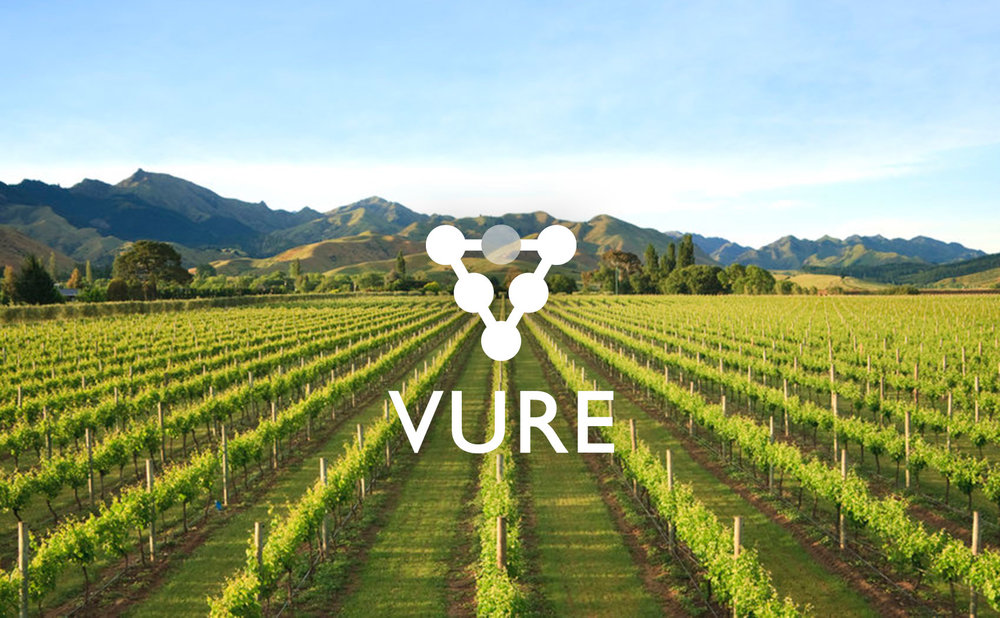Yield Estimation Refined - Vure is a mobile and cloud based viticulture information system. Developed in consultation with a number of wineries across New Zealand, stage one of Vure is designed to help remove the hassles, headaches and inefficiencies in yield estimation data capture.
