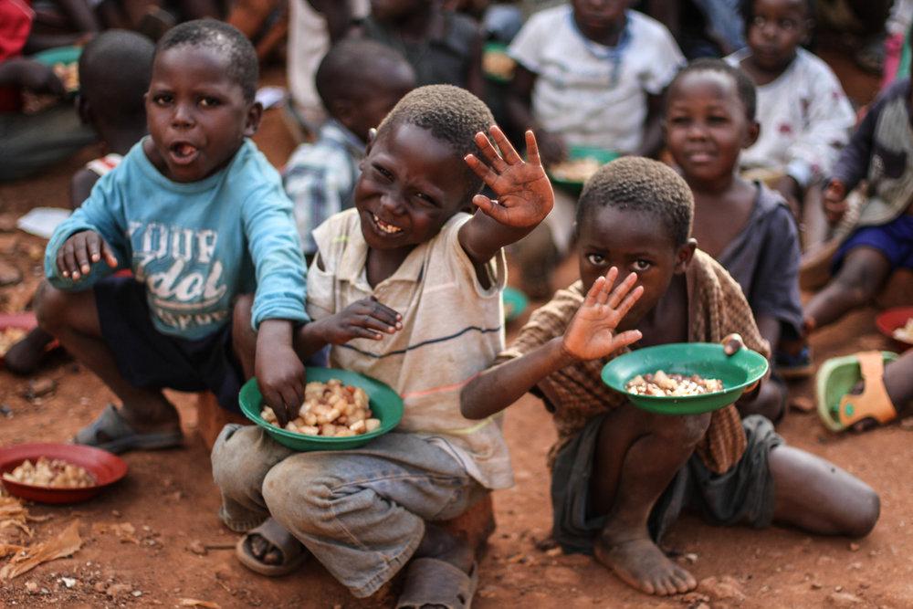 Feeding project.jpg