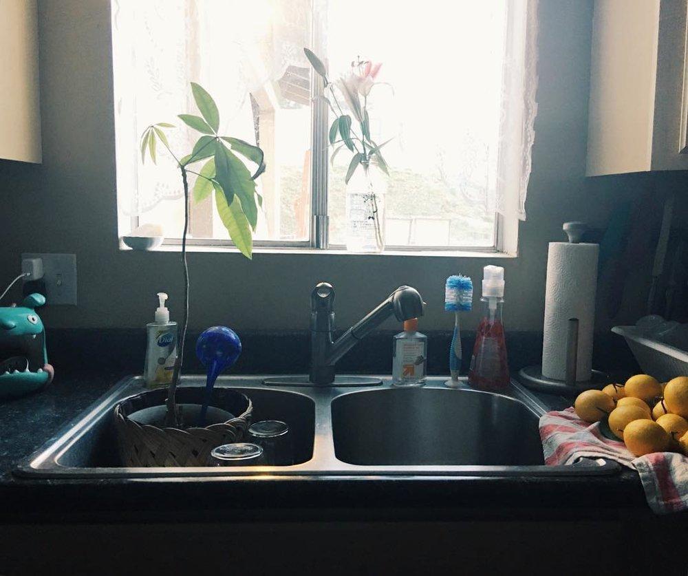 kitchen-feb2016
