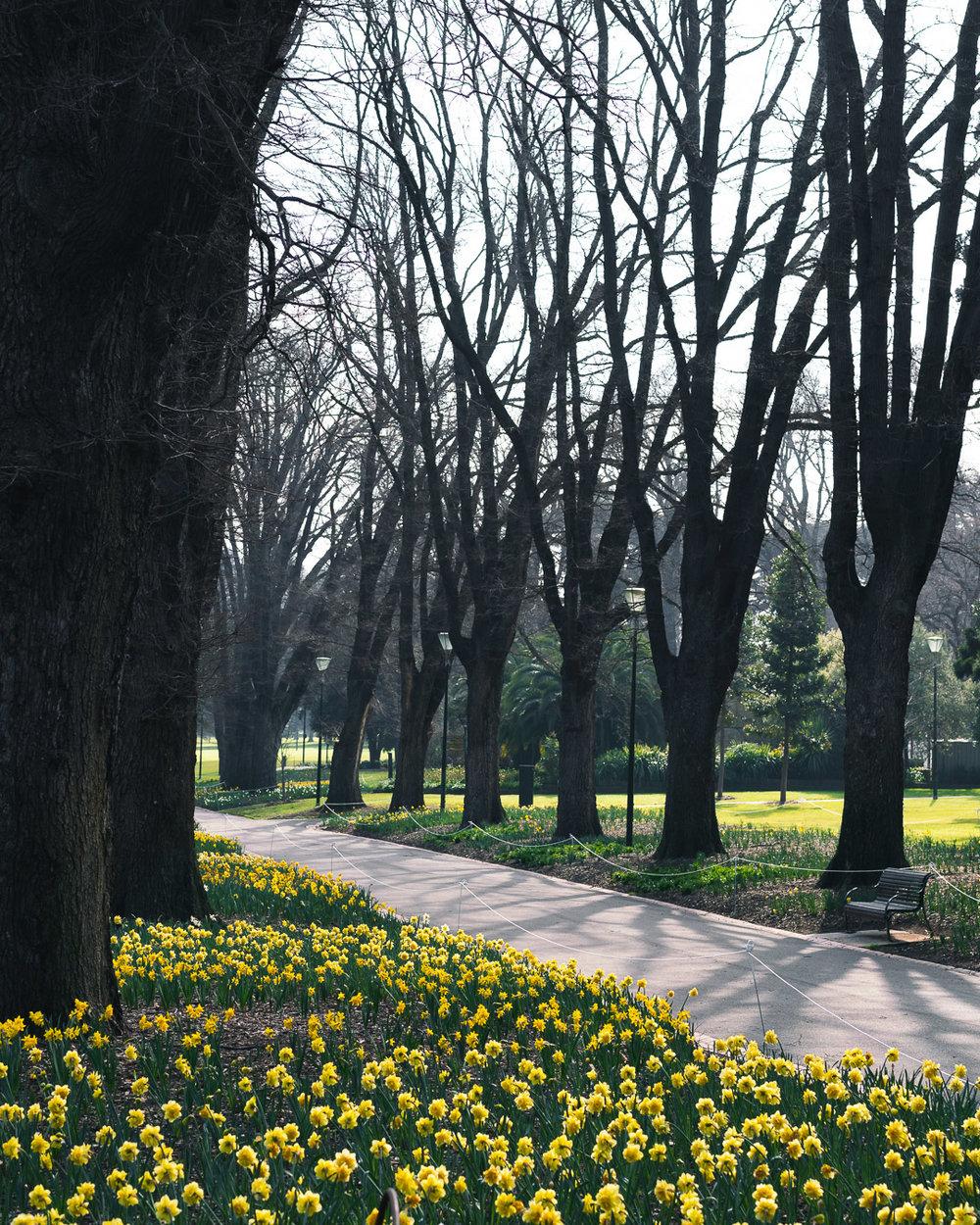 Fitzroy Gardens Melbourne-10.jpg