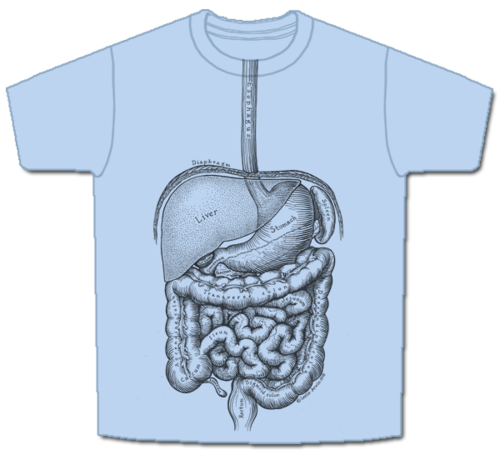 Skeletees Skeletees Anatomical T Shirts Designed And Illustrated By