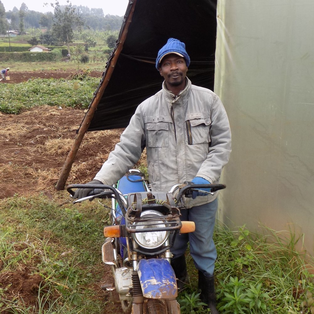 David Gachwe Distribution Manager