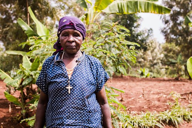 #ThursdayThoughts - We want your creative opinions! What do you think is the key to empowering smallholder farmers and lifting them out of poverty? . . . #kenya #agriculture #farmer #dairyfarming #cows #milk #smallholder #postthepeople #peopleplanetprofit #discoverportrait #photographysouls #humanity_shots_ #great_captures_people #people_infinity #ventures #socialenterprise #socialgood #entrepreneurship #impact #artofvisuals #ourplanetdaily #bevisuallyinspired #collectivelycreate #exlusive_shot #thecreatorclass #visualsoflife #igkenya #vscokenya #fantastic_shotz