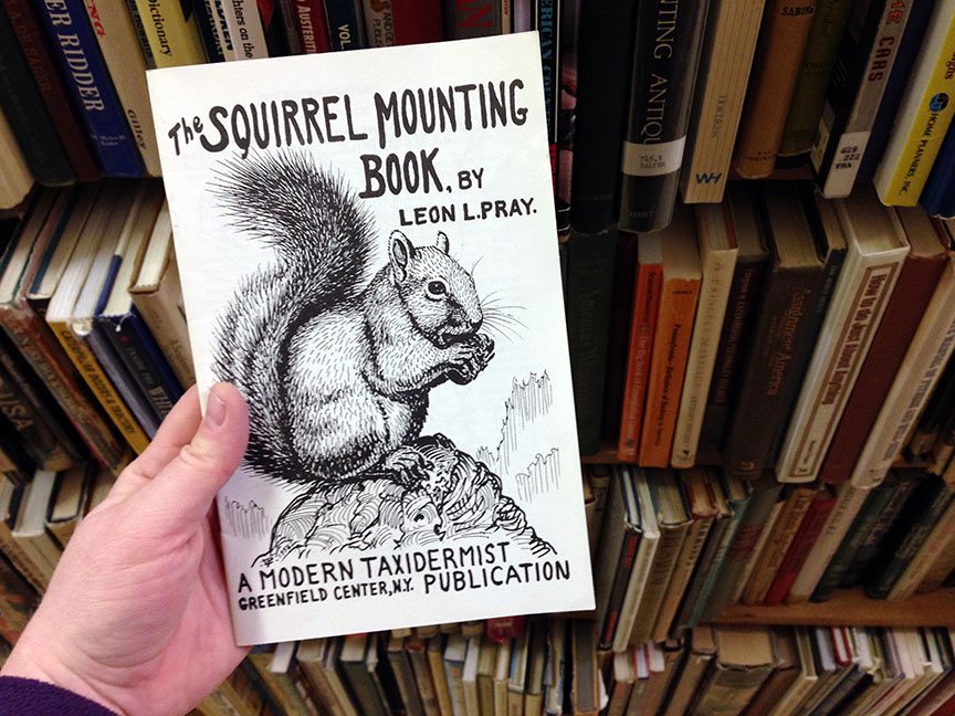 TheSquirrelMountingBook