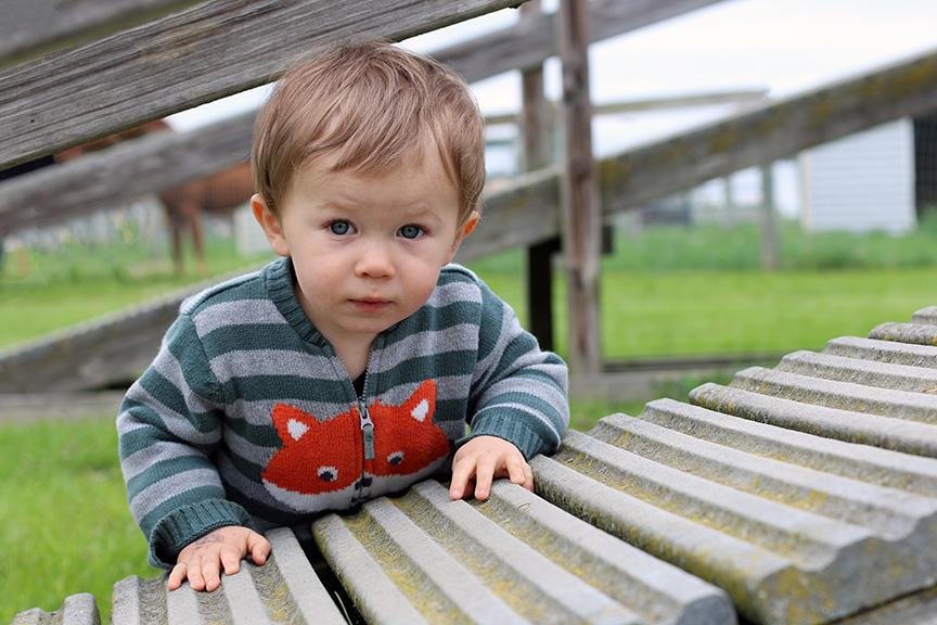 BabyInFoxSweater