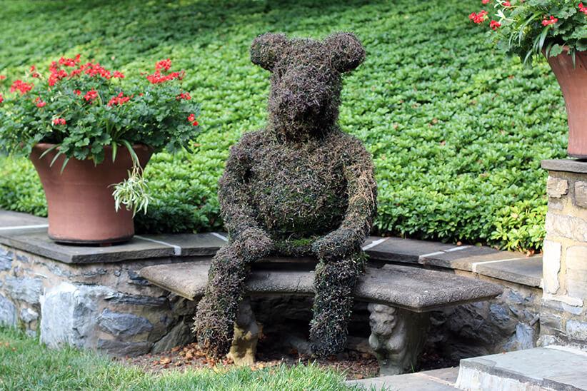 TopiaryBear
