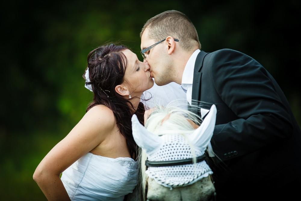 Sesja ślubna w stadninie koni