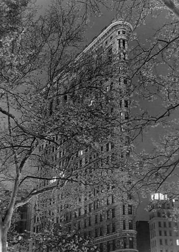 Michael Magill The Flatiron Building New York City