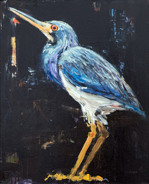 Tr-Colored Heron<br>acrylic on canvas<br>24 x 30 inches