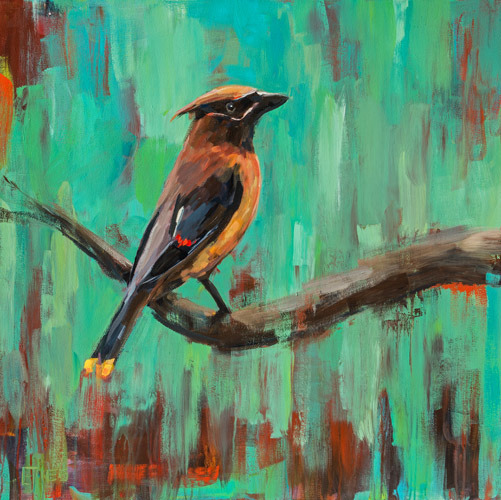 Cedar Waxwing<br>acrylic on canvas<br>36 x 36 inches