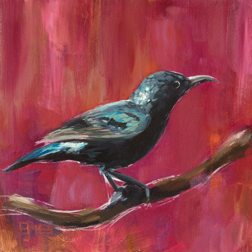 Black Chinned Sunbird<br>acrylic on canvas<br>12 x 12 inches