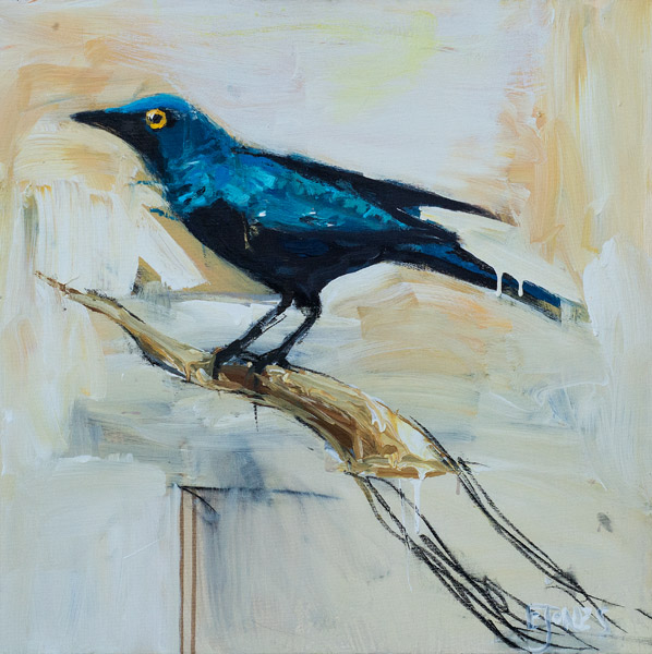 Starling<br>acrylic on canvas<br>24 x 24 inches