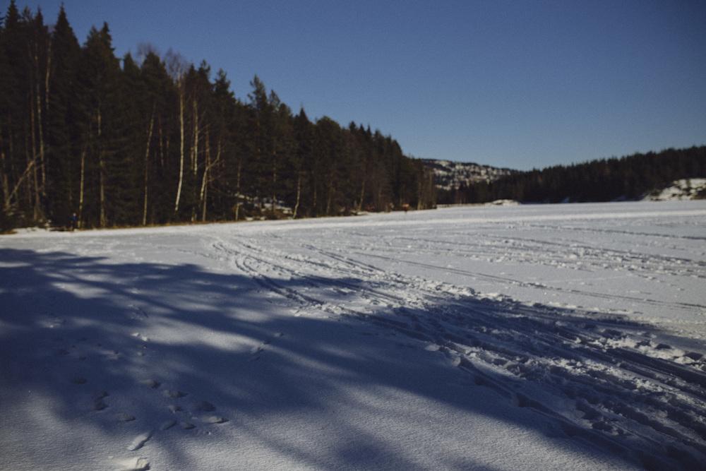 Ski_39.jpg