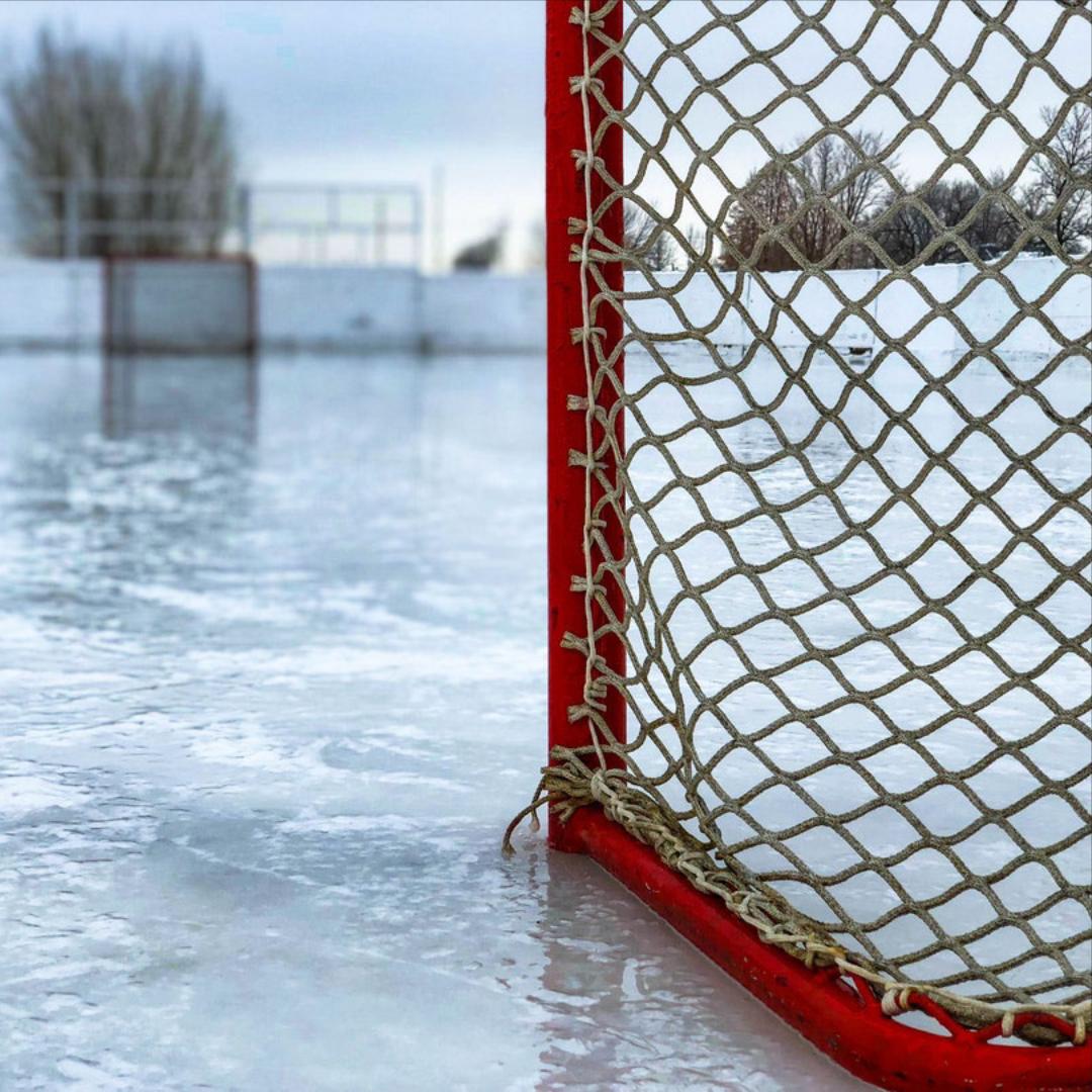 Calgary Hitmen Hockey Game (Youth) — lakeridgecommunity