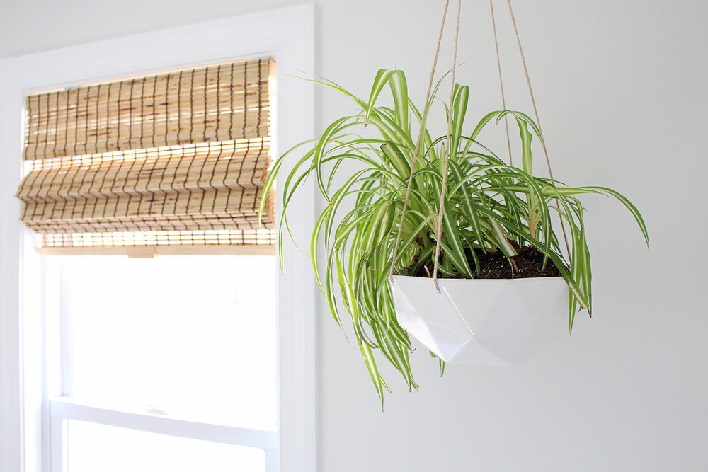 Gorgeous hanging planter from Convivial Production - a designer and manufacturer of modern ceramic home and garden wares. | Mix & Match Design Company's home office