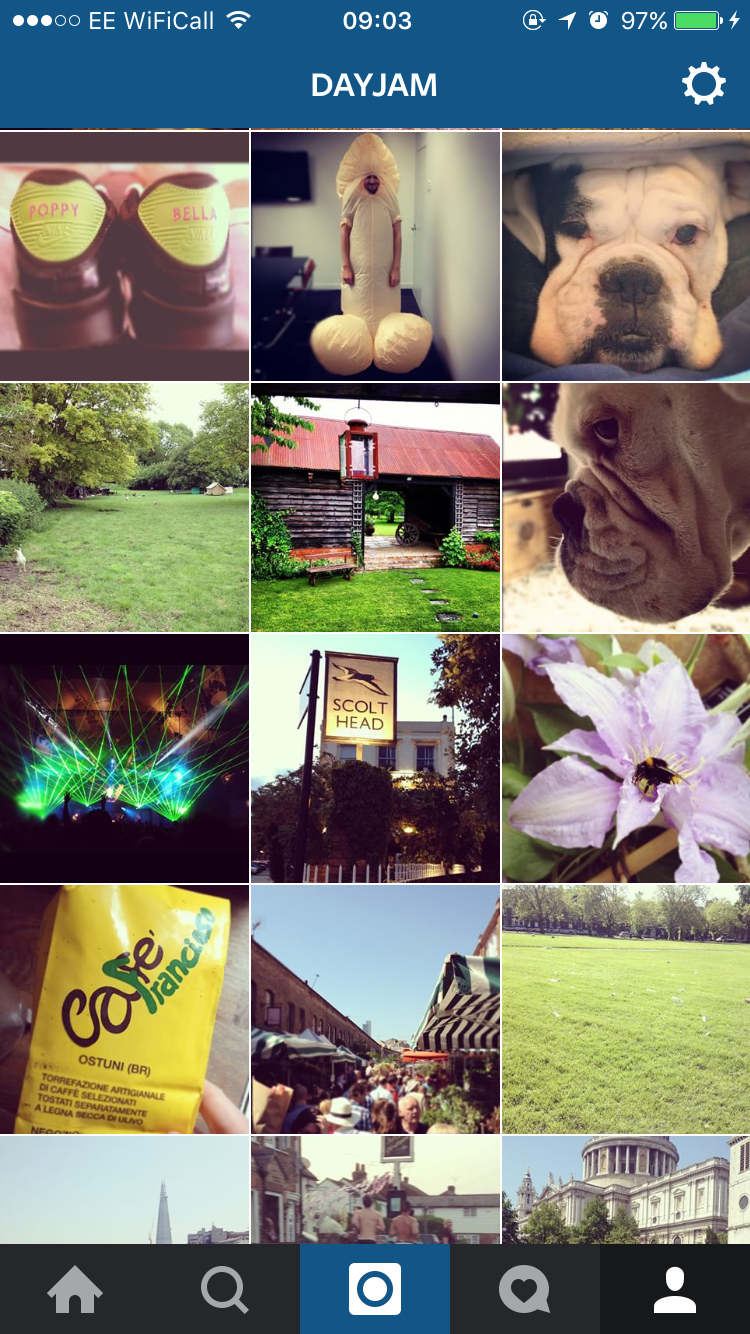 MY INSTAGRAM BEFORE becoming a parent: PHOTOS OF DOGS, PUBS, GIGS, LONDON, MY BROTHER-IN-LAW DRESSED AS A GIANT PENIS.