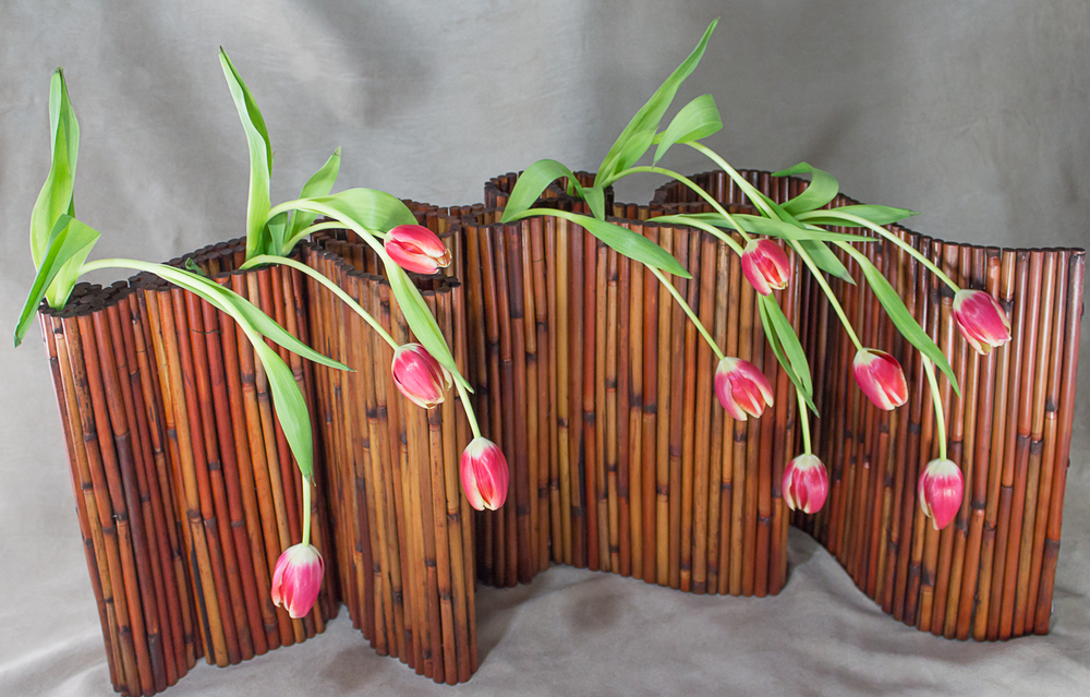 Bamboo and Tulips by Pebble and Branch Floral Design