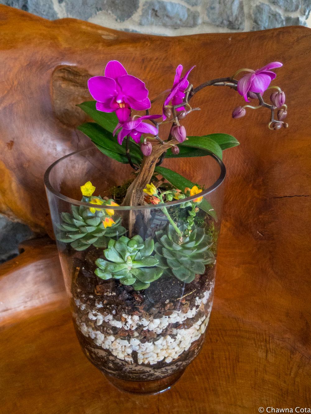 Succulent Terrarrium Pebble and Branch Floral_-3.jpg