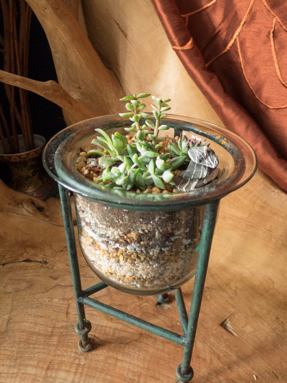 Terrariums Pebble and Branch Floral-16.jpg