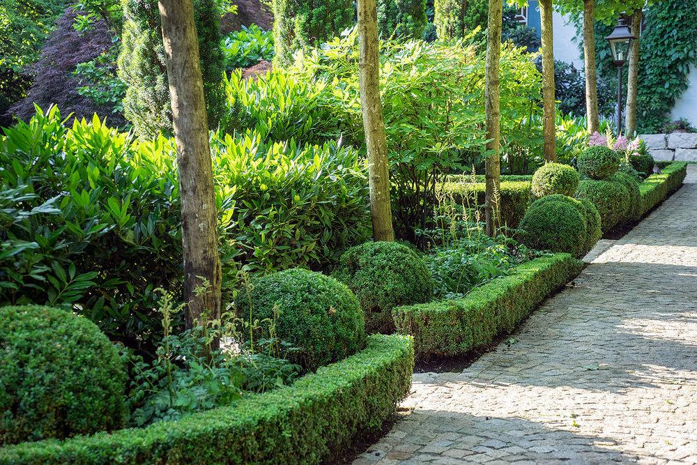 Epp-Gartenbau-Pflanzen-Pflege-61.jpg