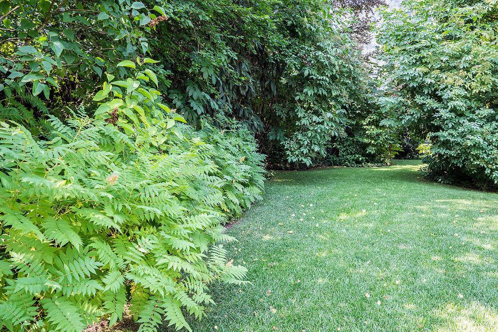 Epp-Gartenbau-Pflanzen-Pflege-66.jpg