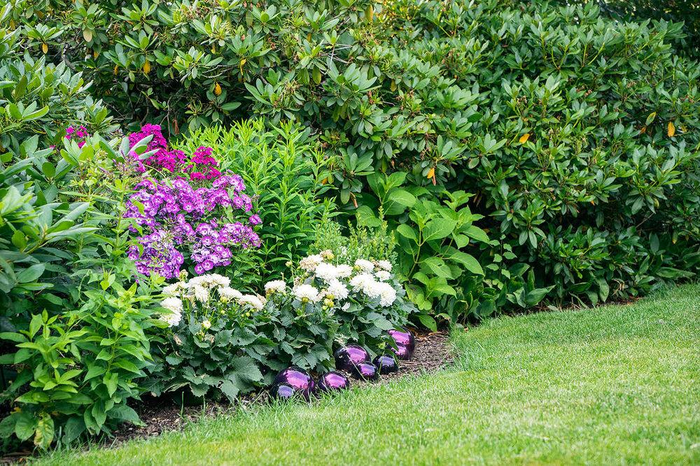 Epp-Gartenbau-Pflanzen-Pflege-68.jpg