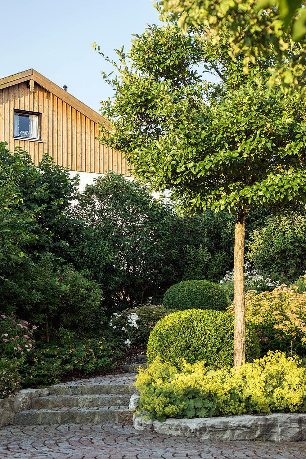 Epp-Gartenbau-Pflanzen-Pflege-70.jpg