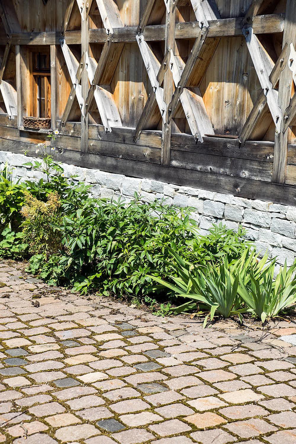 Epp-Gartenbau-Mauer-50.jpg