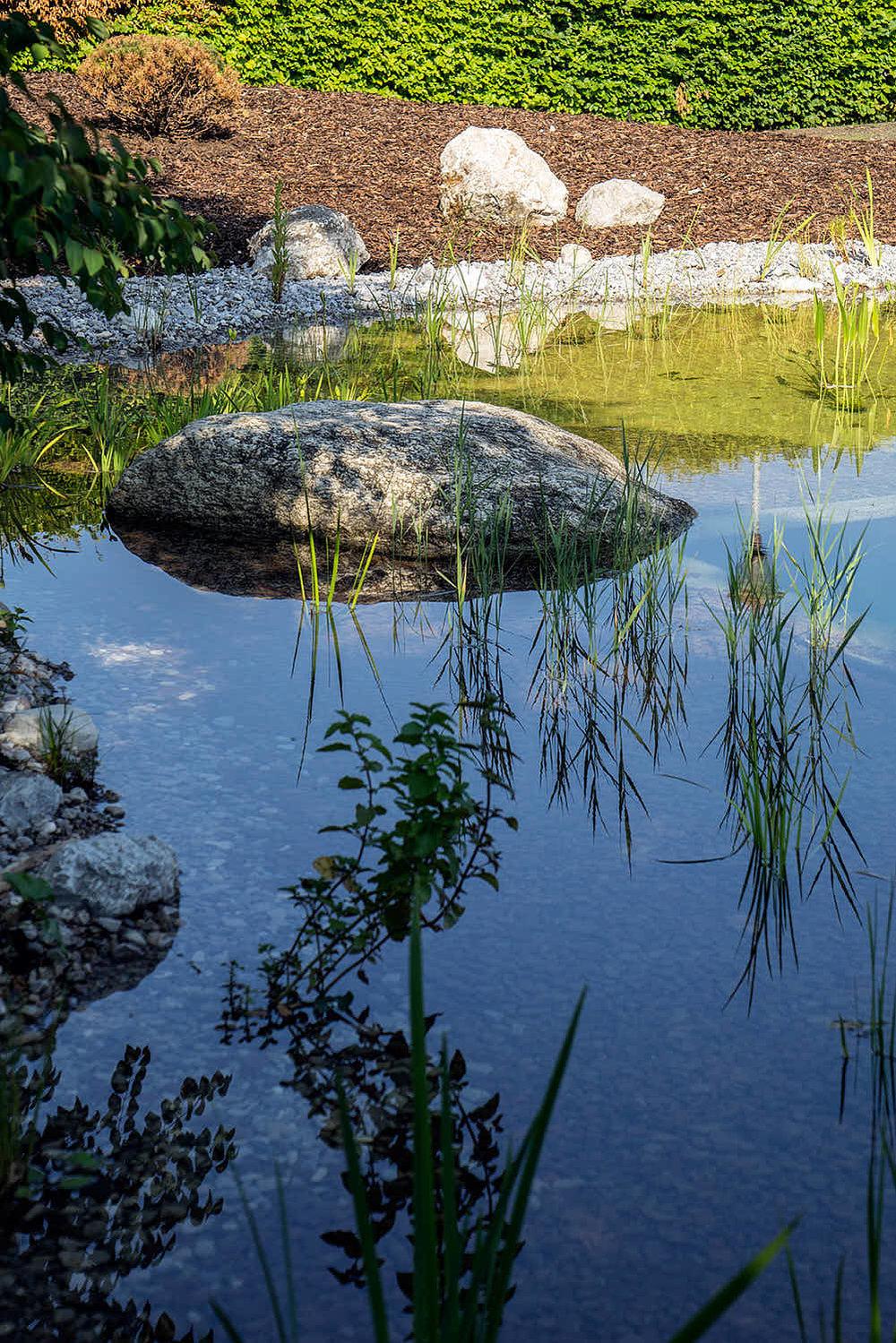 Epp-Gartenbau-Teich-2-169.jpg
