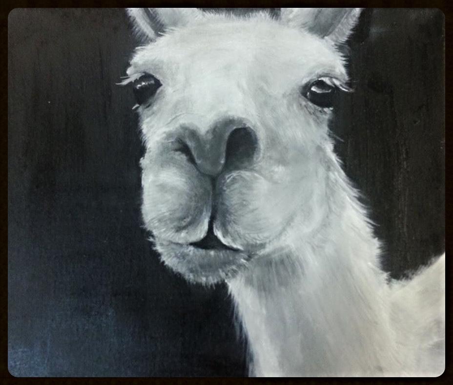 Llama Lady