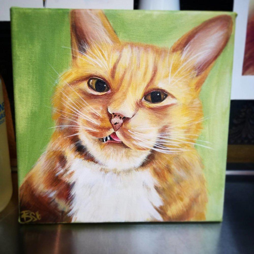 Portrait of Baby Kitty