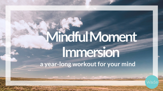 mindful moment immersion final.png