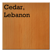 Cedar, Lebanon.png