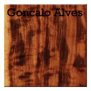Goncalo Alves.png