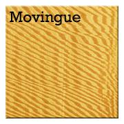 Movingue.png