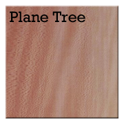 Plane Tree.png