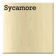 Sycamore.png