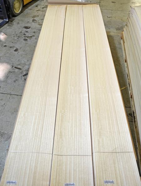 Eucalyptus-Qrtd #78 (2).jpg