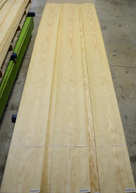 Pine, Yellow-PS #5114715 (2).jpg