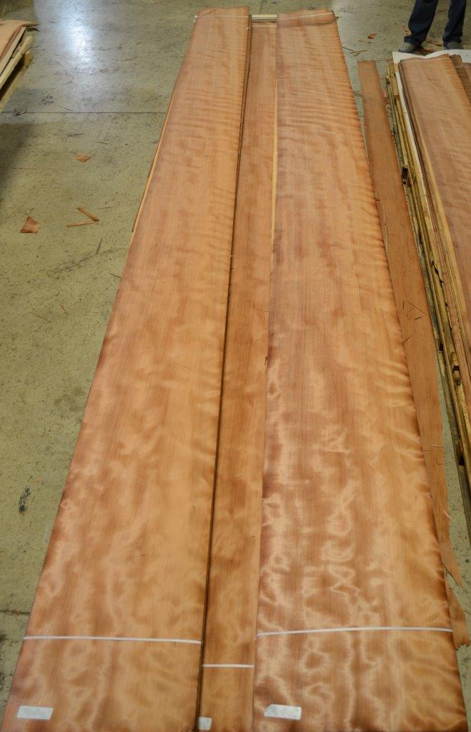 Redwood (1)