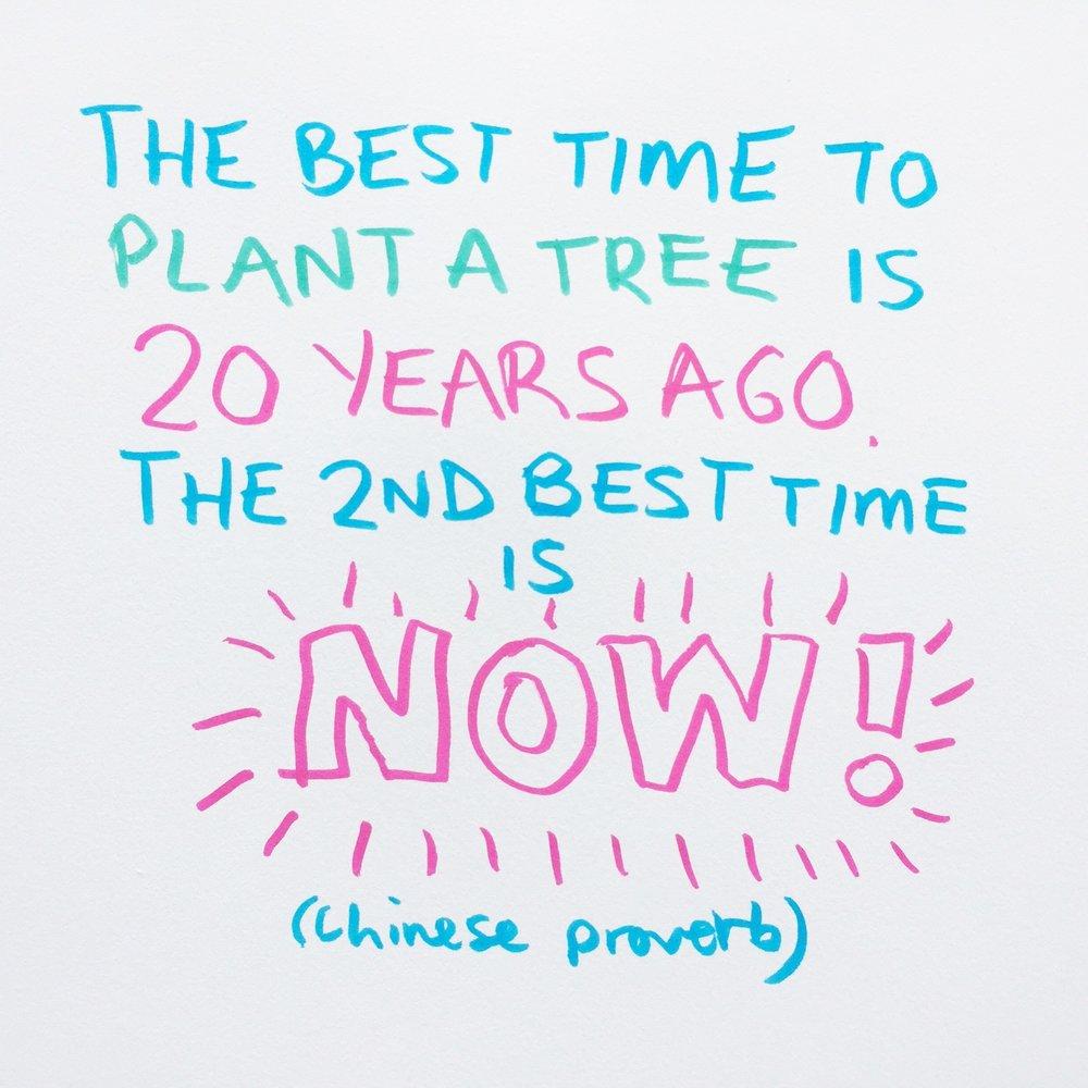 Rebecca-Hass-plant-a-tree.JPG