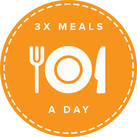 3x meals a day icon.png