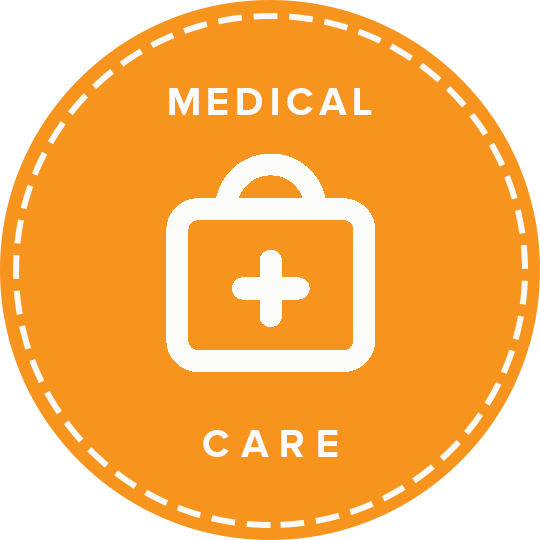 Medical Care Icon.png