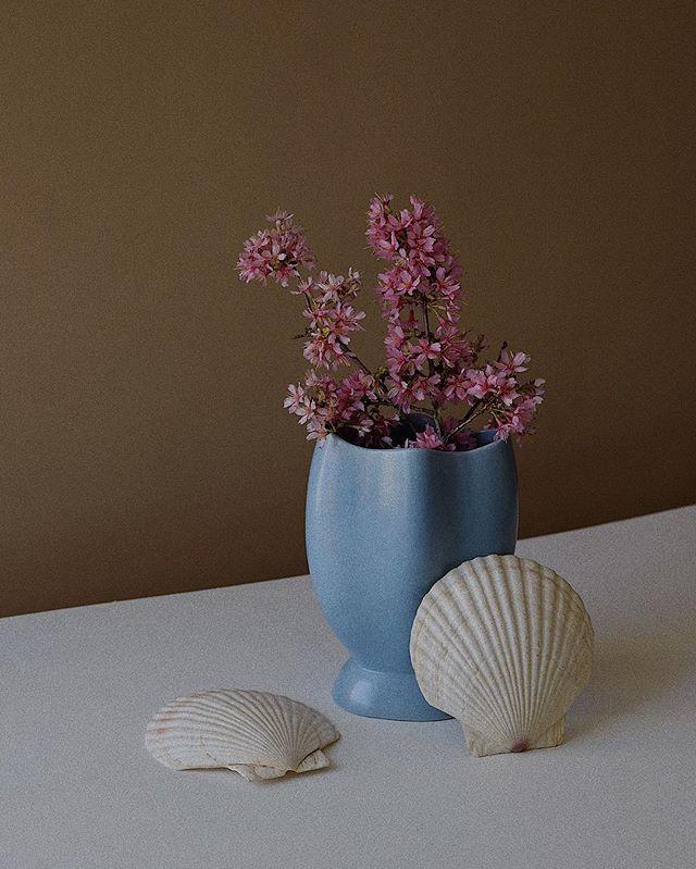 foraging season has begun 🌸 . . . . . . #foraging #springblooms #vintageceramics #vintagevase #seashells #etsyvintage #etsyshop #dsfloral #sweetdreamsdlf #consciousliving #kinfolktable #thatsdarling #forthehome #minimalism #theeverygirl #slowliving #curatedhome #sustainablehome #propstylist #makemoments #shopvintage #feelfreefeed #modernvintage #mytinyatlas #aquietstyle #prettythings #colorpalatte #objects