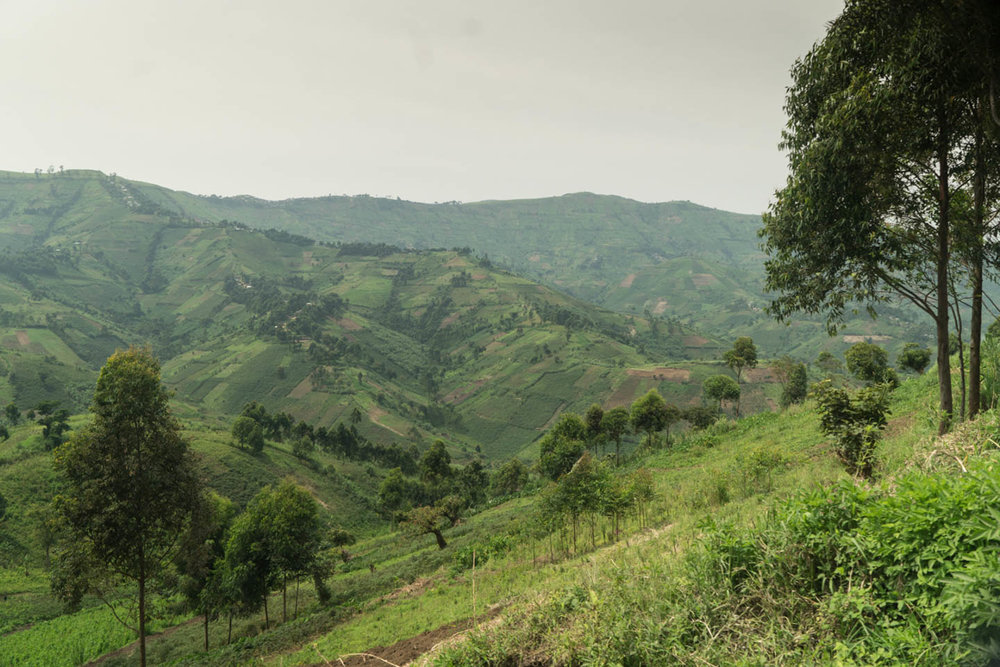 On the road outside of Misissi, Congo, the road overlooks the beautiful and rich agricultural land.
