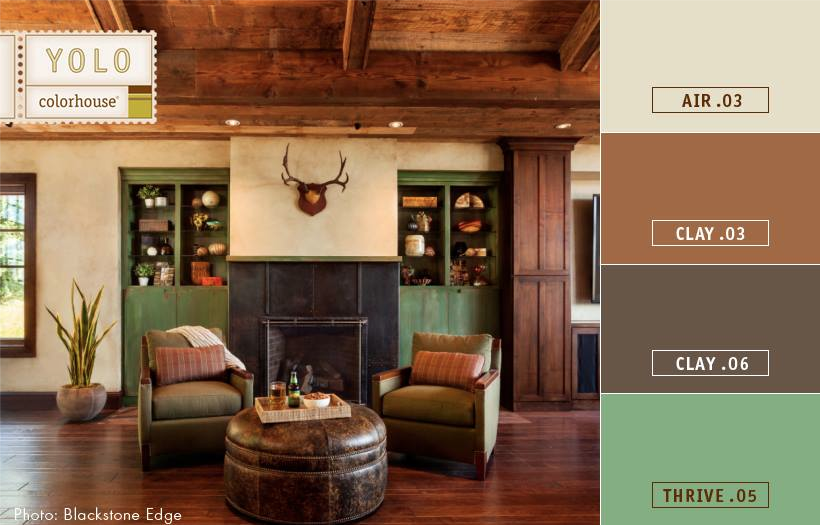 paint colors for a masculine space, get the  look for a bachelor pad, rustic color palette
