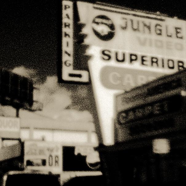 Jungle Video