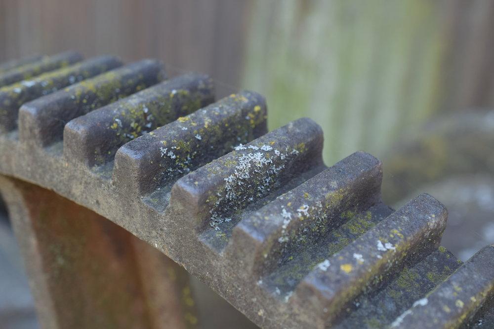 Lichen Gear